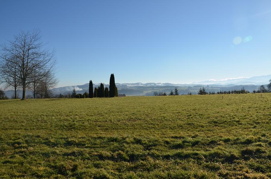 op Lage mit Säntis- und Bergsicht sowie Nähe zum Dorfzentrum Bauland Niederhelfenschwil Kanton St.Gallen