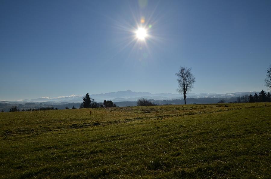 Top Lage mit Säntis- und Bergsicht sowie Nähe zum Dorfzentrum Bauland Niederhelfenschwil Kanton St.Gallen