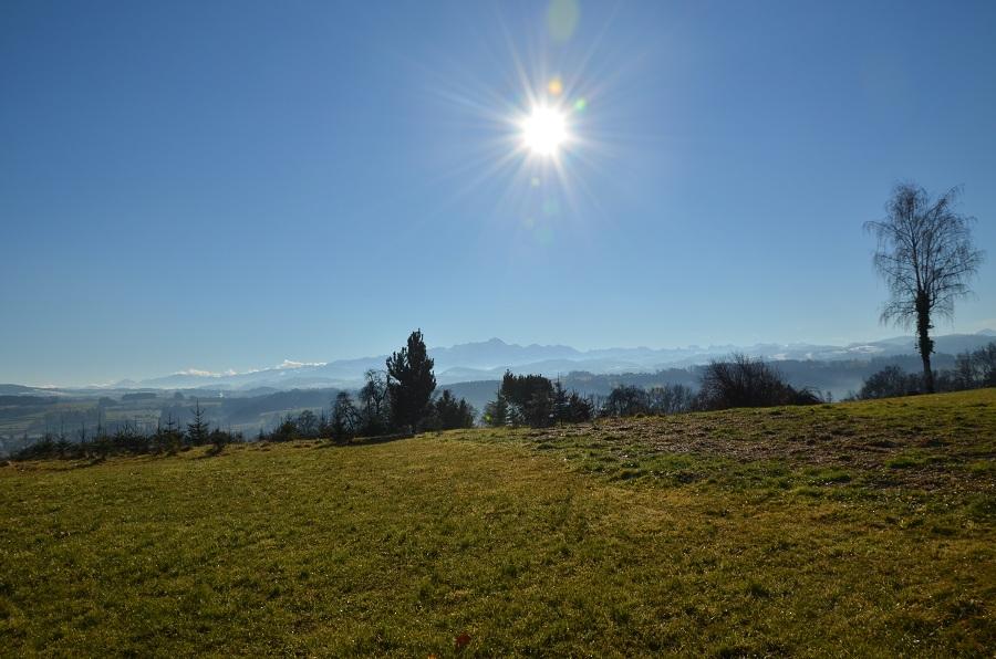Säntisblick und Bergblick Bauland kaufen